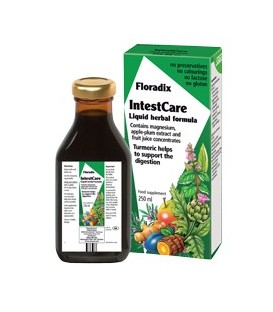 INTESTCARE (digestivo) 250ml. salus