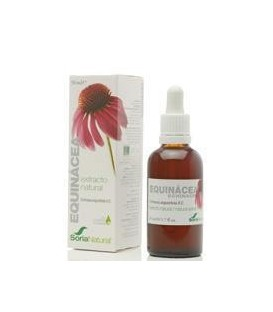 EXTRACTO ECHINACEA (defensas) 50ml. soria natural
