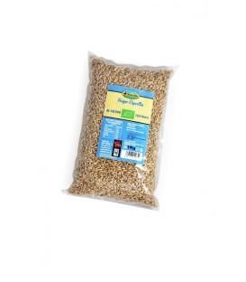 BEBIDA AVENA NATURAL 1lt. the bridget
