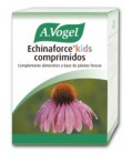 ECHINAFORCE KIDS 80cp. vogel
