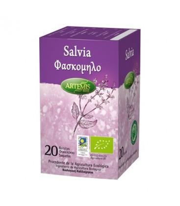 SALVIA 20ud. artemis