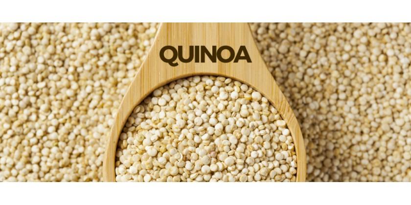 Conociendo un poco más sobre la Quinoa